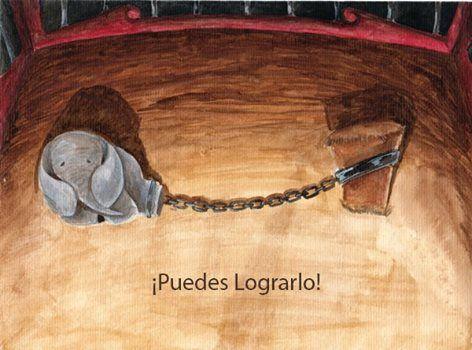 Siguiendo con las creencias limitantes y para dar una idea más clara de cómo actúan en nosotros, les transcribo un cuento de Jorge Bucay, donde se hace una perfecta analogía. EL ELEFANTE ENCADENADO Jorge Bucay Cuando yo era pequeño me encantaban los circos, y lo que más me gustaba de los circos eran los animales. …