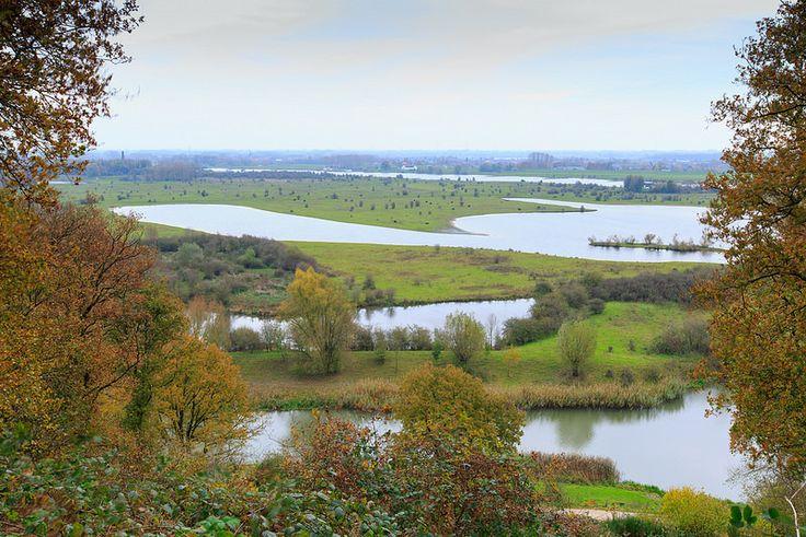 Nature reserve Blauwe Kamer seen from top of Grebbeberg near Wageningen, Utrecht, Netherlands