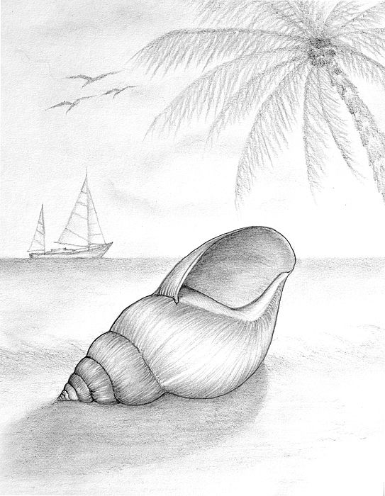 Drawing Drawing - Pencil Drawing Of Beach Scene by Evelyn Sichrovsky