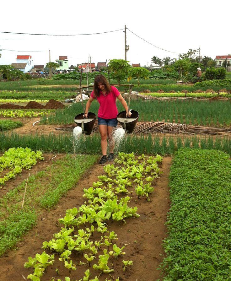 Definitely harder work than using a hose! #VietnamSchoolTours #EcoTour
