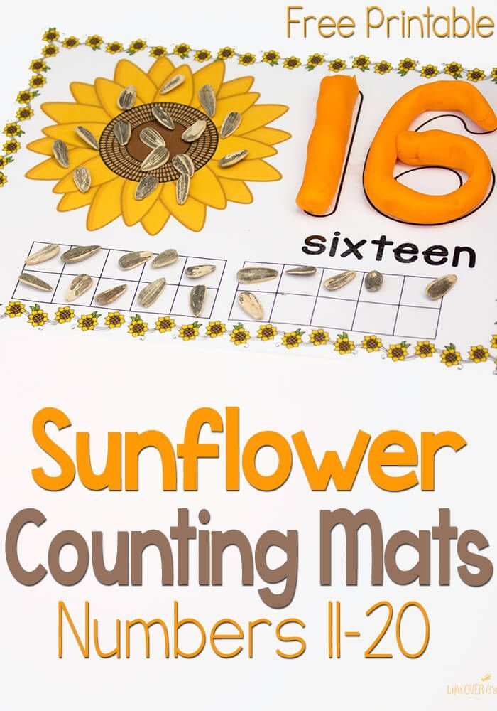 These free printable sunflower play dough mats for numbers 11-20 are great! There are so many ways to use them. Words, number recognition, counting and ten-frames! Coordinates with the 1-10 set on the site.