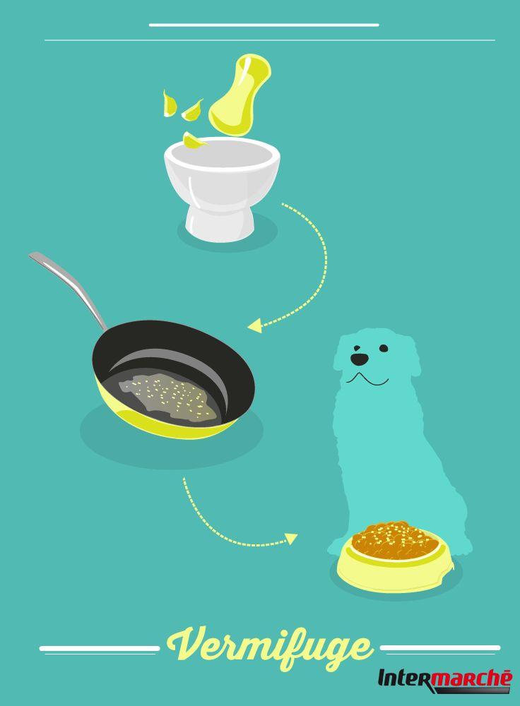 #Astuce : faire un vermifuge naturel pour votre chien. 1) Piler 1/4 de gousse d'ail et le faire revenir rapidement dans une poêle.2) L'incorporer à la nourriture de votre compagnon. Il s'agit d'un traitement de 3 jours à faire une fois par an : il ne faut pas donner trop d'ail à votre animal !