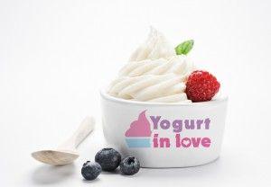 frozen-yogurt-franchise