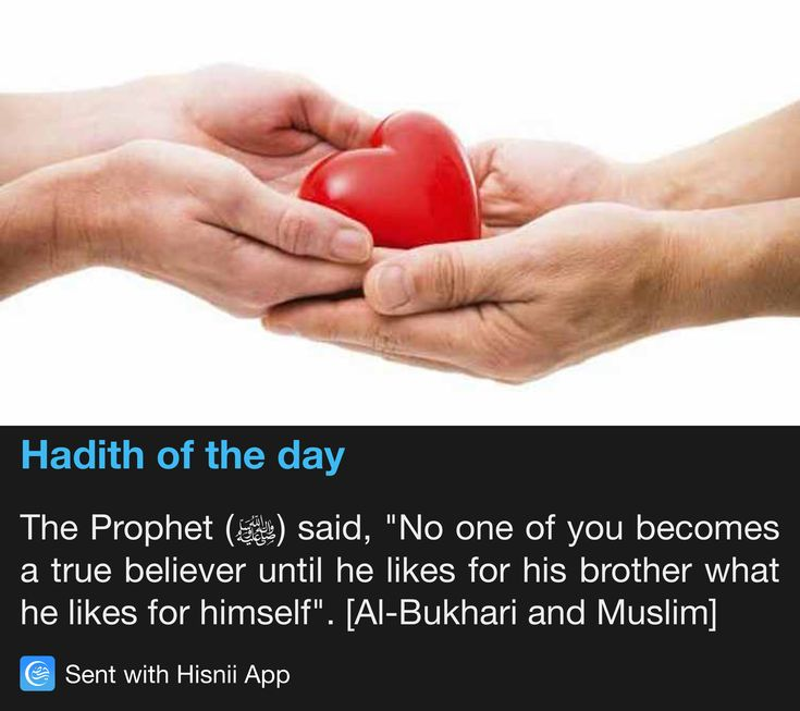 Hadith of the day                                                                                                                                                                                 More