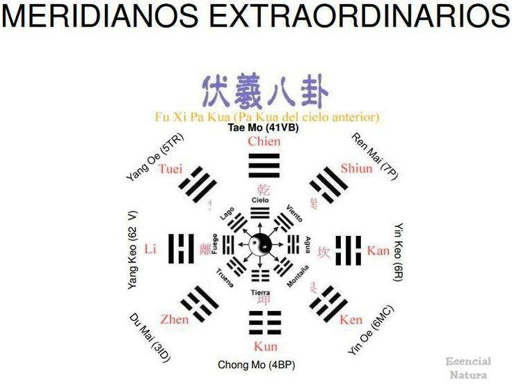 MTC. Meridianos Extraordianrios - Vasos Maravillosos -: Vasos De, Vasos Maravilloso, Tradicional China, Meridiano Extraordianrio, Medicina Tradicional