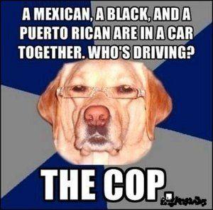 Black, racist, ethnic, and nigger jokes.