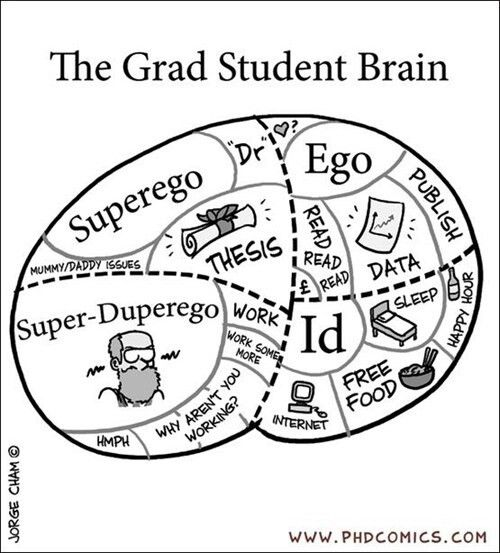 Psychology of a PhD student                                                                                                                                                                                 More