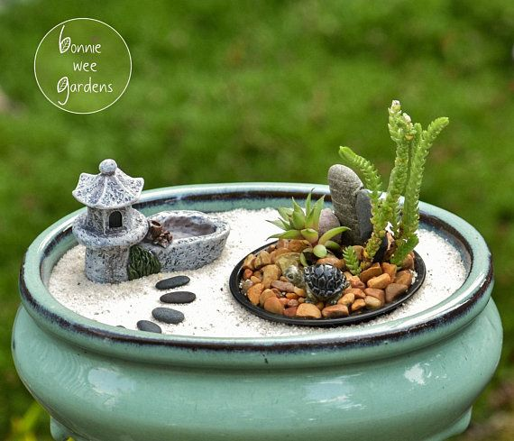8 Piece Miniature Zen Garden Kit With Bonsai Planter Japanese