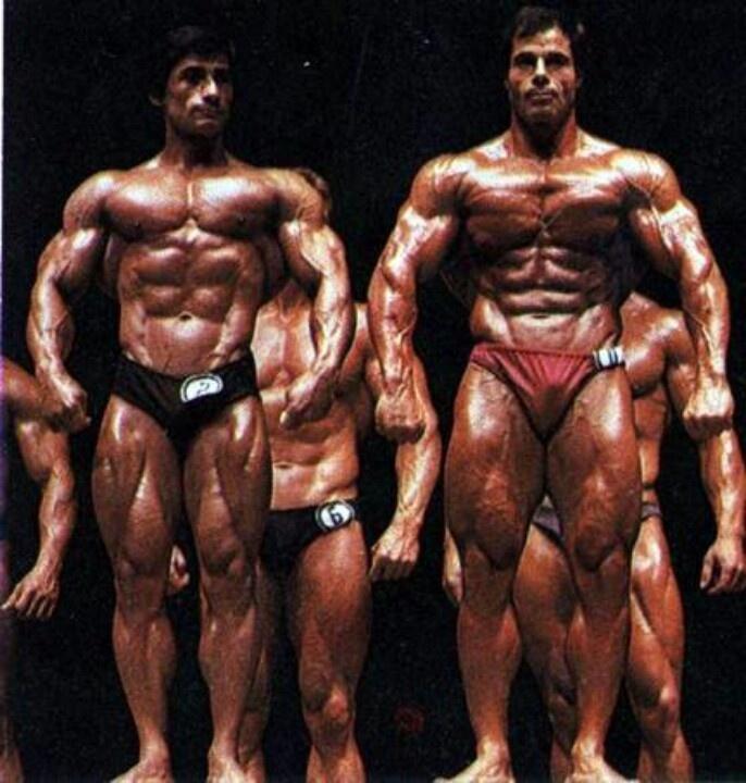 steroid cycle workout plan
