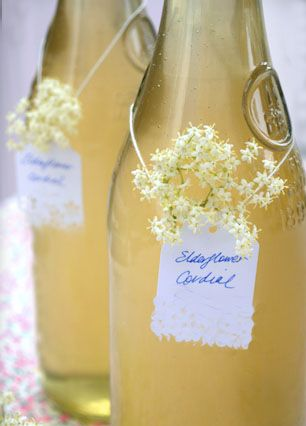 Elderflower. Homemade cordial is so lovely. Elderberry & clove - just finished.