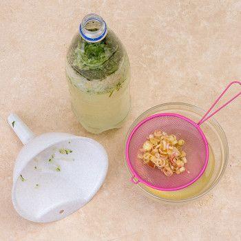 Огуречный лимонад с лаймом и яблоком