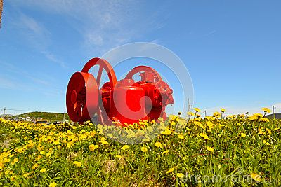 The bright red engine of a ship found a new home among the wildflowers