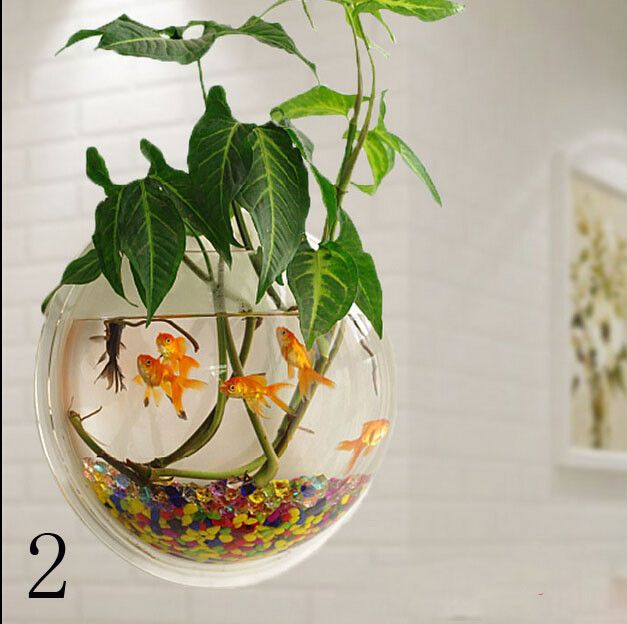 Material: Acrylic Size:195*195*98mm Water capacity approximately:230ml Color:color-1,color-2 Quantity:1 1 x Wall Mounted Bowl Fish Tank (fish, stone, plant are not included!) 1 x Set of screw
