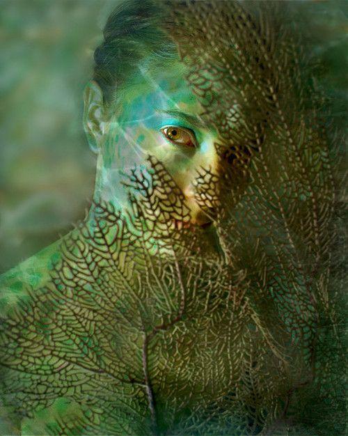.: Photos, James Edward, Mermen, Inspiration, James D'Arcy, Art Mermaids, Edward Creamer, Photography