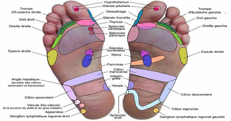 La réflexologie plantaire vous apaise et vous fait baigner dans un état de profond repos et de détente, où vous êtes ouvert aux suggestions que vous vous donnez – de façon similaire à l'hypnose. Vous entrez dans un endroit réceptif qui permet aux désirs de votre coeur de se manifester. La réflexologie agit en douceur …