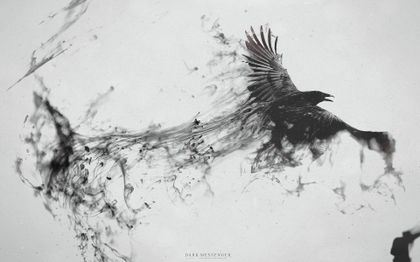 black and white dark birds digital art ravens 1920x1200 wallpaper Art HD Wallpaper