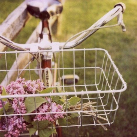 Polaroid Photography - Bike Photograph - Fine Art Photograph - Lilac- Spring - Summer Love- Signed.