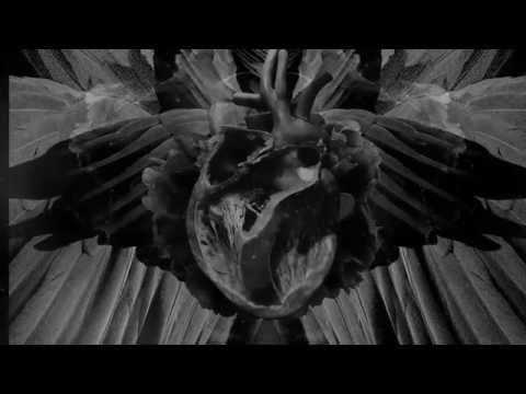 Mujuice - Swan Path (Metamorphosis 2014) - YouTube