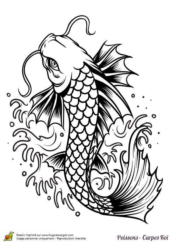 Coloriage poisson carpe koi torrent sur Hugolescargot.com - Hugolescargot.com
