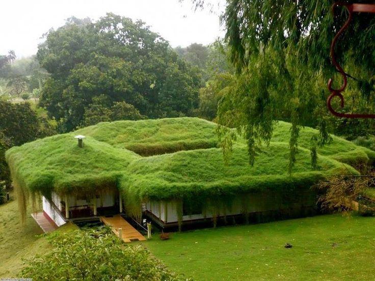 Edifici verdi