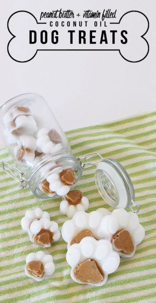 Coconut Treats For Dogs Healthy