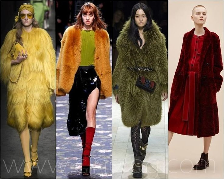 Latest Fashion Trends Fall