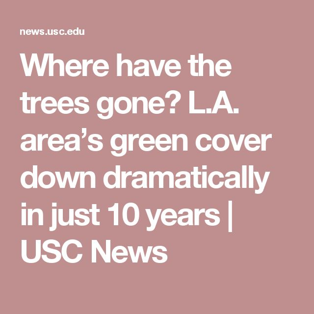 Where have the trees gone? L.A. area's green cover down dramatically in just 10 years | USC News