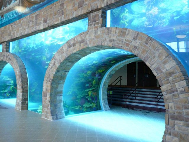 Acrylic Tank Manufacturing of Las Vegas, Nevada | Home of the Hit TV Show TANKED only on Animal Planet | Custom Acrylic Aquariums, Pool Panels, Water Features and Exhibits