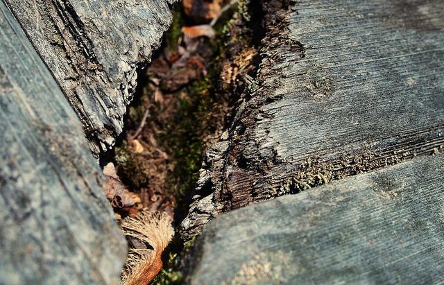 Crack by Pixel Fantasy, via Flickr