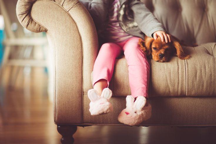 Kjæledyr blir stadig mer populært i Norge! De fleste barn ønsker seg et kjæledyr. Forskere mener det er en god løsning for barn og god helse.