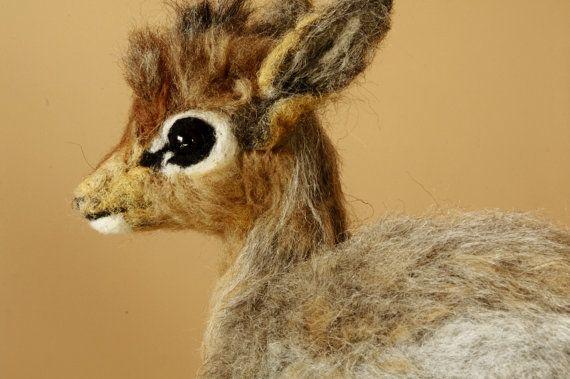 Dik Dik life sized, baby, dik-dik felted sculpture, needle felting animal, faux taxidermy, antelope cube, fawn tiny baby, dik dik