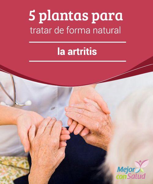 5 plantas para tratar de forma natural la artritis  No debemos olvidar que estas plantas pueden funcionar como complemento al tratamiento que nos recete el médico y nunca sustituirlo. Además, le consultaremos antes de empezar a consumirlas