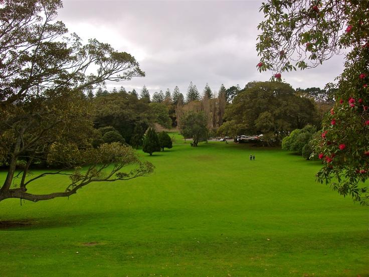 Cornwall Park, Auckland NZ