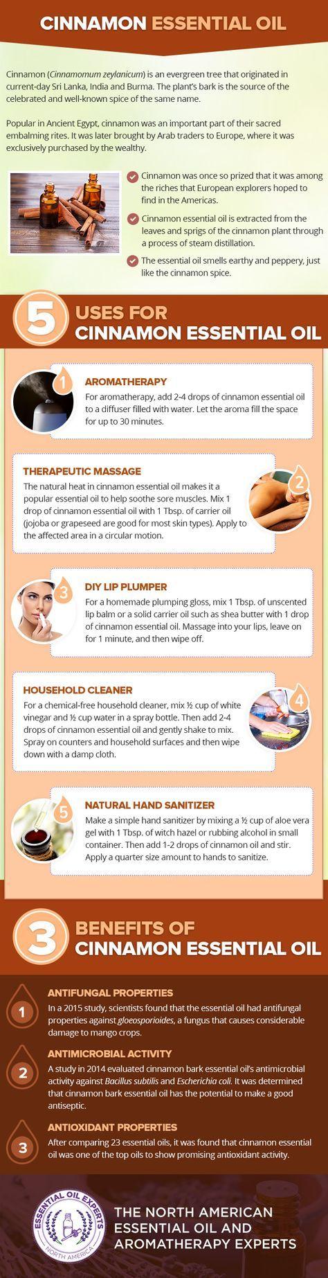 Cinnamon Essential Oil Uses & Benefits
