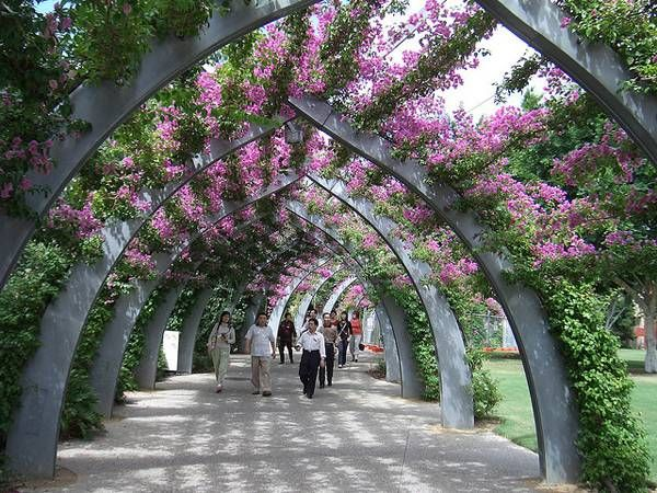 241 Best Images About Landscape Ref On Pinterest Gardens