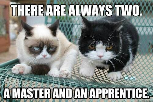 Grumpy and the apprentice