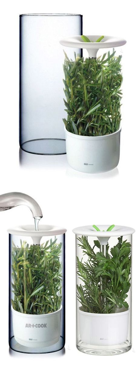 Herb keeper // just add water and this herb storage keeps herbs fresh for up to 2 weeks