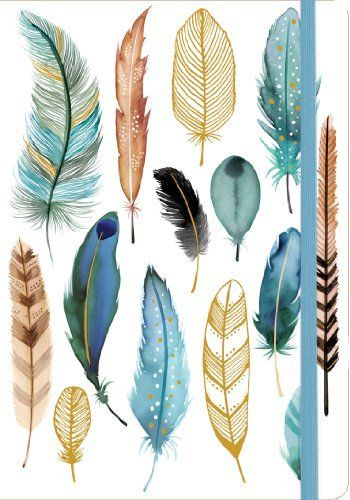 Feathers Gilded Journal, http://www.amazon.co.uk/dp/0735342040/ref=cm_sw_r_pi_awdl_Ga50tb10GN3Q6