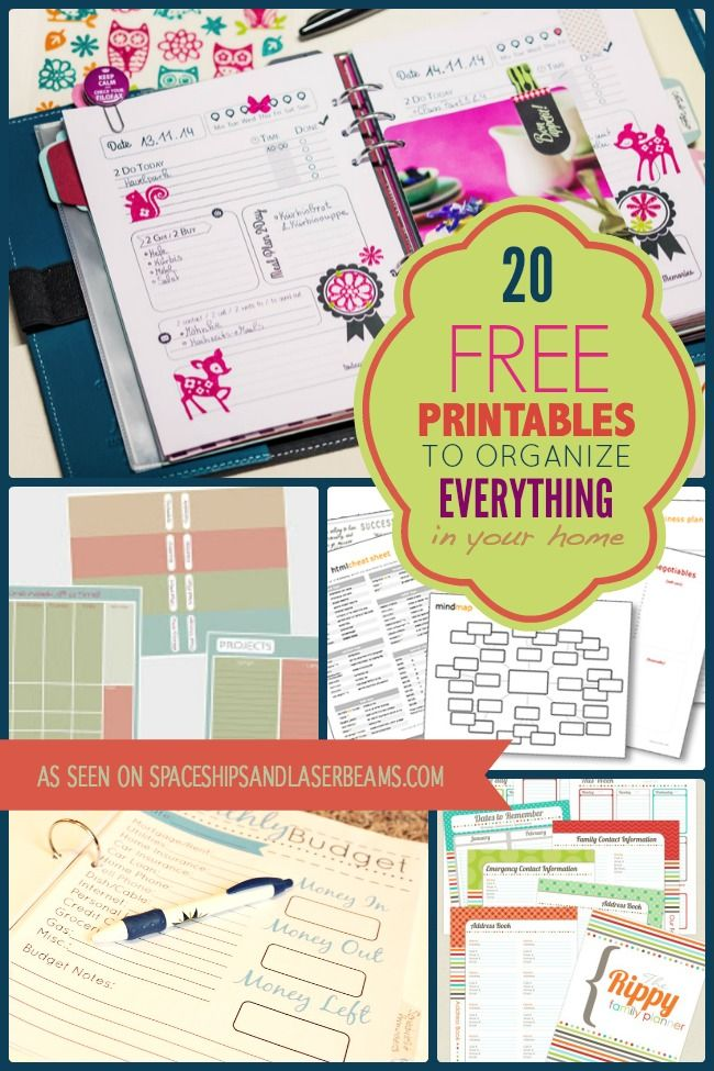 20 Free Printables to Organize Everything in Your Home