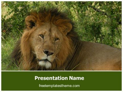 14 best free wildlife animals powerpoint ppt templates images on get this free lion powerpoint template with different slides for you upcoming toneelgroepblik Gallery