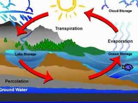 COOL water cycle song