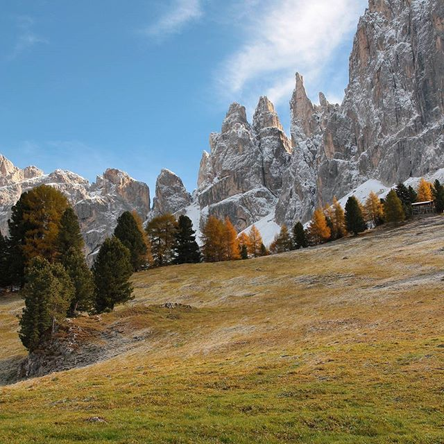 Nach den 3 Zinnen gehören die Vajolettürme zu meinen liebsten Felsformationen in den #Dolomiten. #rosengarten #Südtirol #wandern #hiking #Italy #naturpur #volgoitaly #volgobolzano #herbst #alpes #gebirge #mountainview #southtyrol #visitsuedtirol #outside #schönertag #alpen #italianalps #trentinoaltoadige #ig_trentinoaltoadige #wunderschön #autumndays
