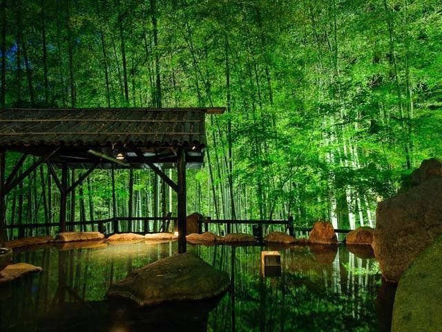 So breathtaking scenery. Takefue ryokan it is located at the middle of the 32-acre land in the bamboo forest.