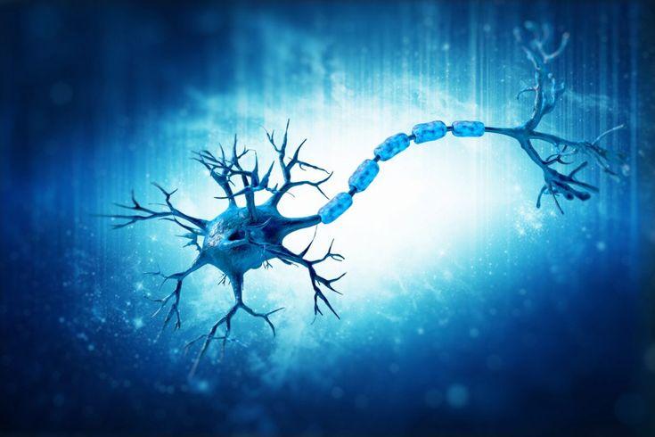 Η ιατρική κάνναβη είναι θεραπευτική για την πολλαπλή σκλήρυνση Η πολλαπλή σκλήρυνση είναι μια εξουθενωτική ασθένεια του κεντρικού νευρικού συστήματος....