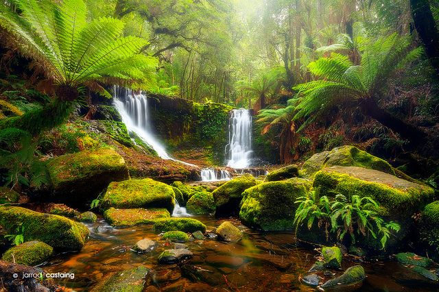 Horseshoe Falls - Tasmania - Australia