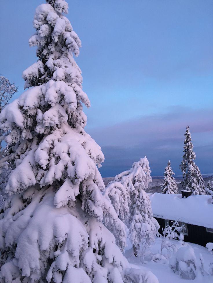 Fageråsen, Trysil , Norway