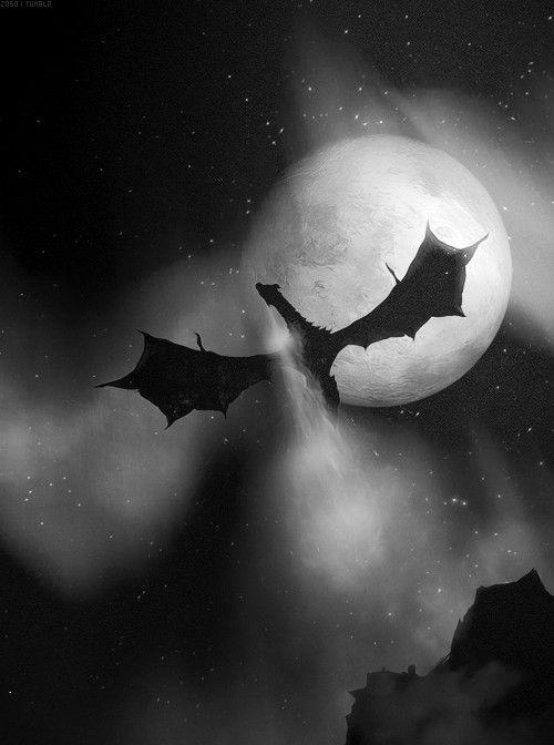 Dragon flying in the night sky
