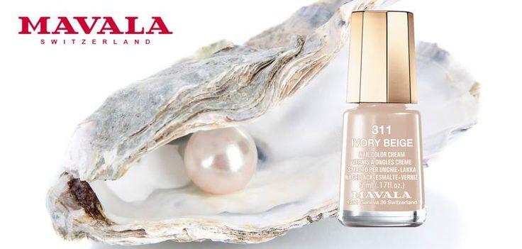 Prezioso come una perla, 311 IVORY BEIGE è un avorio lucente e regale.