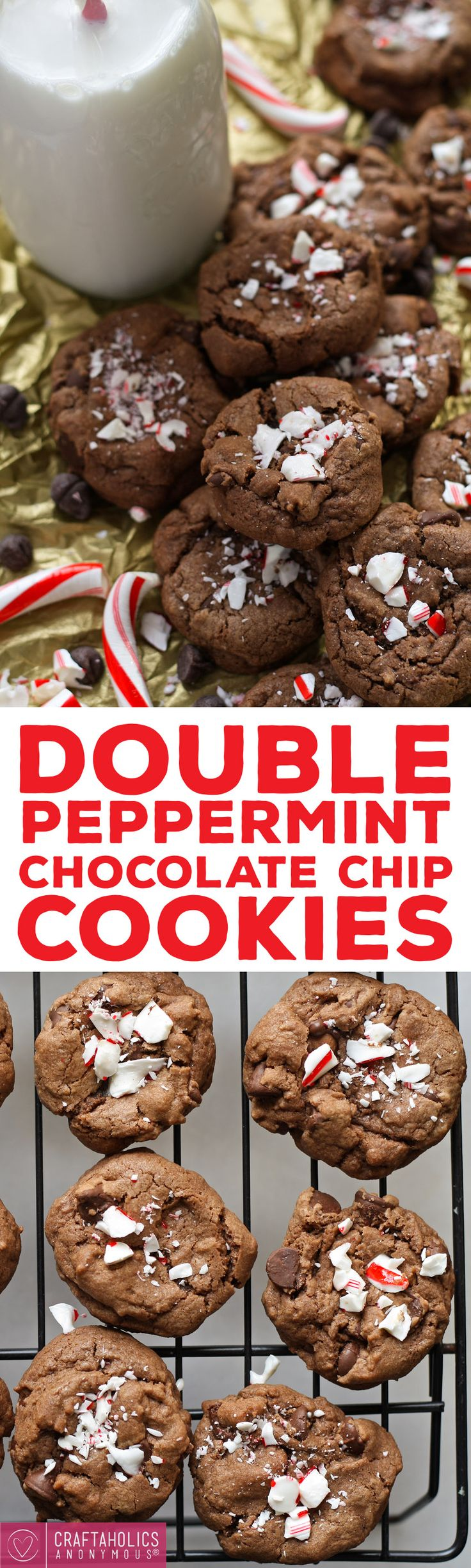 Double Peppermint Chocolate Chip Cookies recipe - Gooey, chewy and AMAZING Christmas cookies!