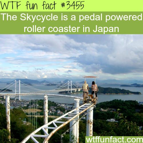 Skycycle, the pedal roller coaster in Japan -  WTF fun facts